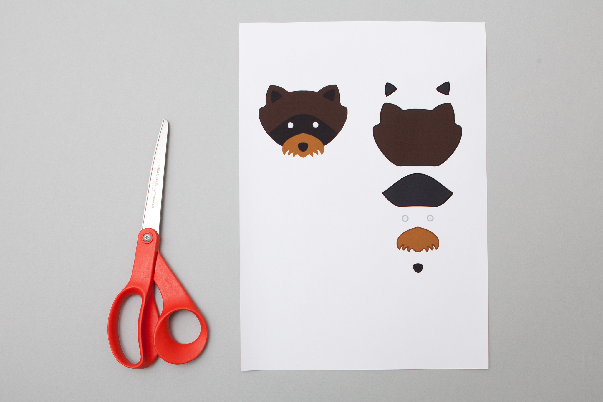 Raccoon patch - paper